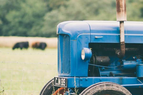 Blue Tin Farm